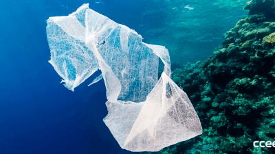En 2050 habrá más plástico que peces en el océano