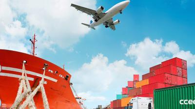 ¿Qué tanto afecta el transporte al medio ambiente?