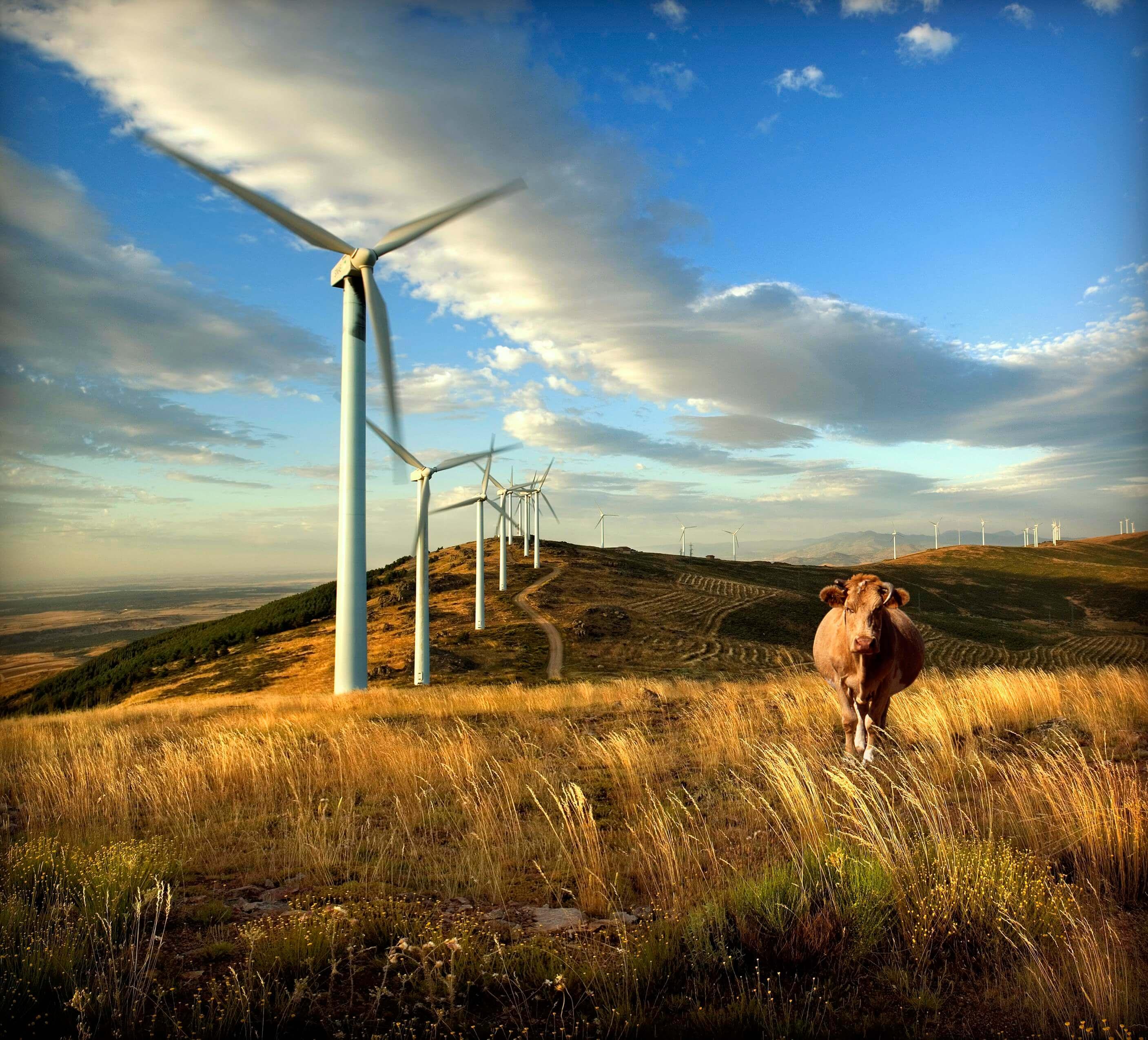4 países son 100% energía limpia.