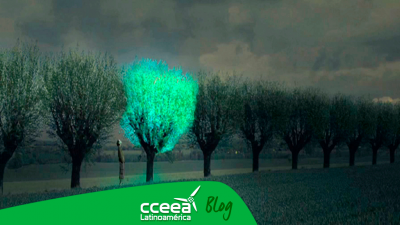 Glowing Plants creando árboles bioluminiscentes para sustituir los faroles