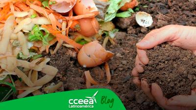 Las compostas ¿Qué son y cómo puedes tener una en tu jardín?