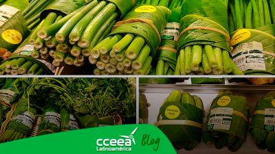 Hojas de plátano por envoltorios de plástico en Tailiandia