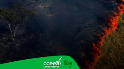 ¿Quién es responsable por los incendios en la Amazonía?